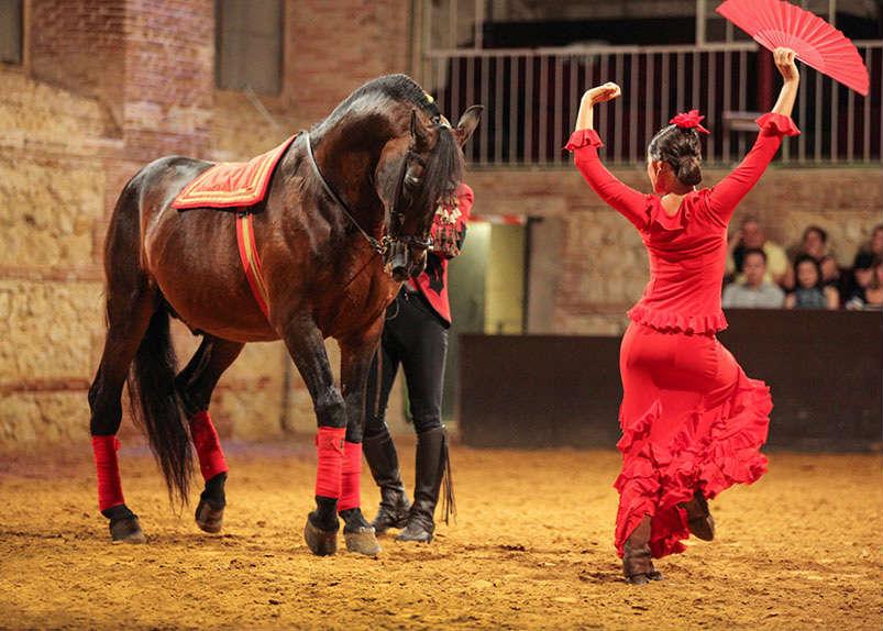 облегчить картинки конь танцует вязания мяча, описание